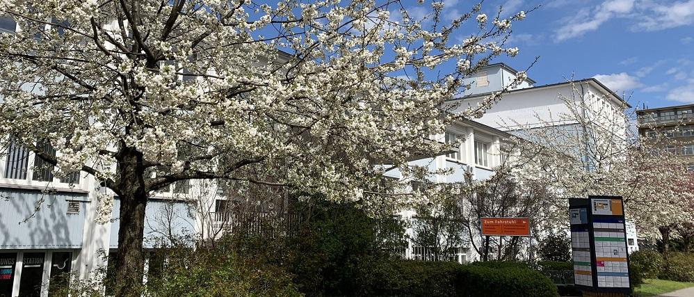 Eingang zum ÄrzteZentrum im Frühling